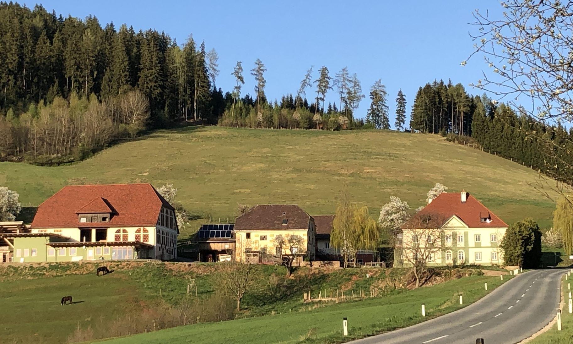 Schelmberg1